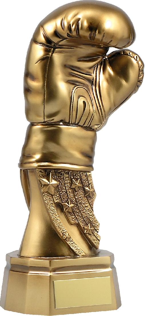 A1082B Boxing trophy 200mm