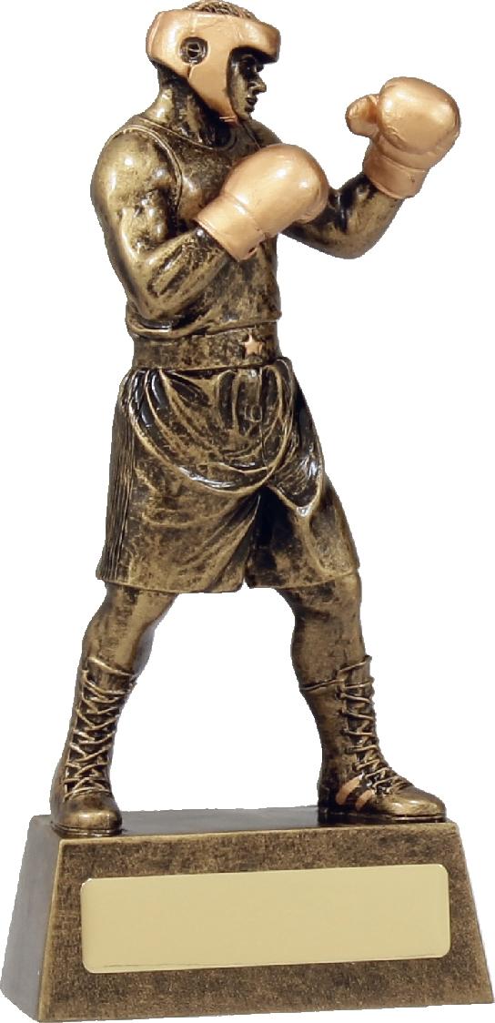 A1249B Boxing trophy 190mm