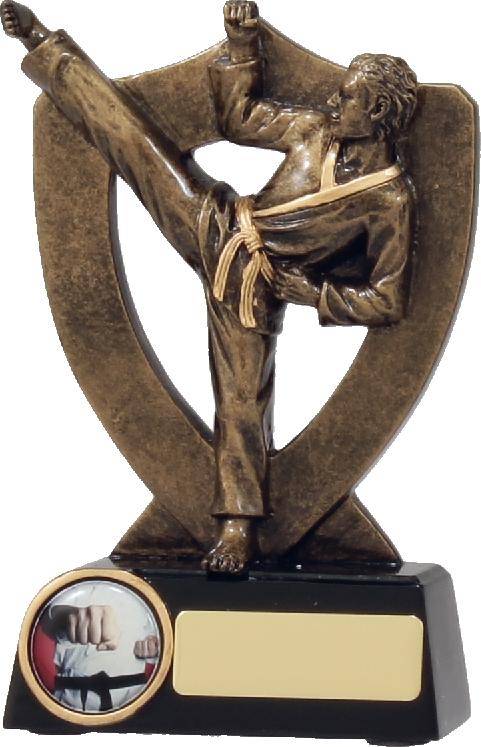 A313AA Martial Arts trophy 165mm