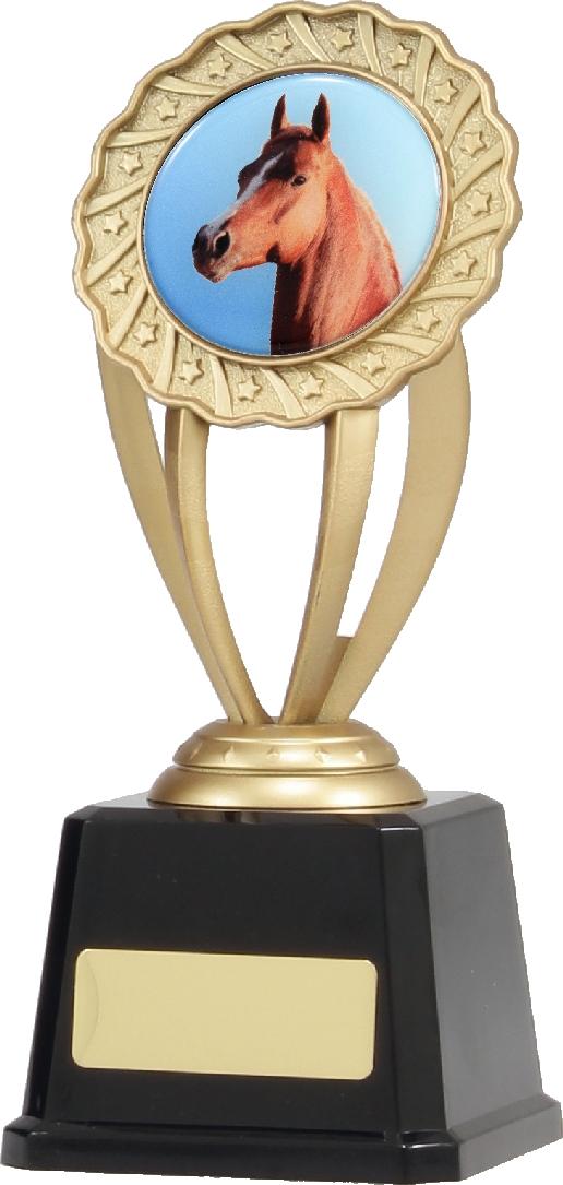 Q682 Achievement Trophies Trophy 190mm