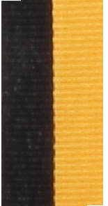 RN72 All Sports Ribbon 800x23mm