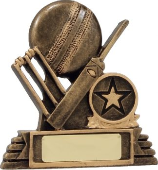 11010 Cricket trophy 100mm