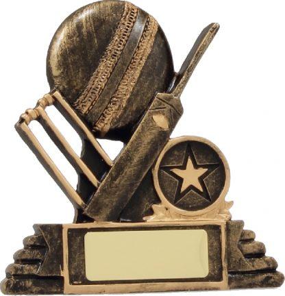 11110 Cricket trophy 120mm