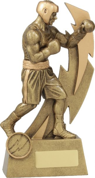 11632C Boxing trophy 205mm