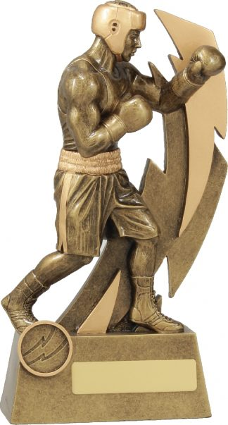 11632D Boxing trophy 230mm