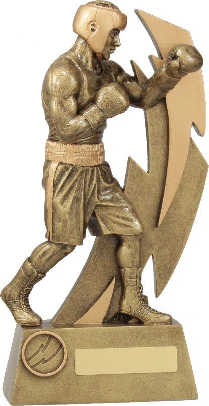 11632E Boxing trophy 270mm