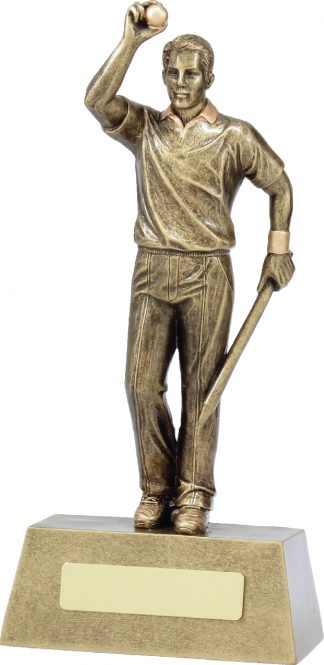 11711D Cricket trophy 240mm