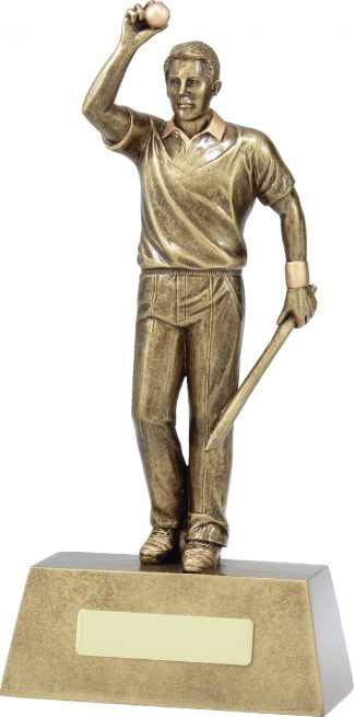 11711E Cricket trophy 117mm