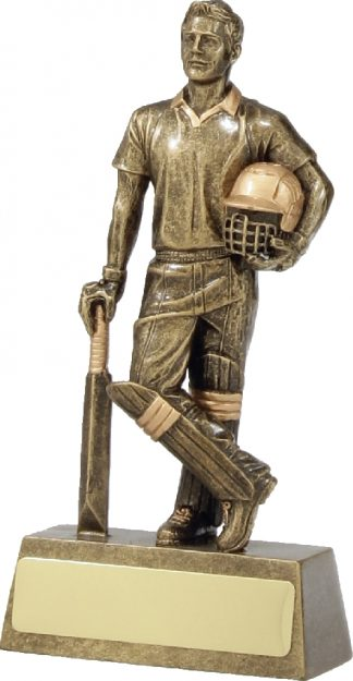 11714A Cricket trophy 150mm