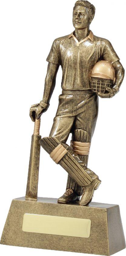 11714D Cricket trophy 240mm