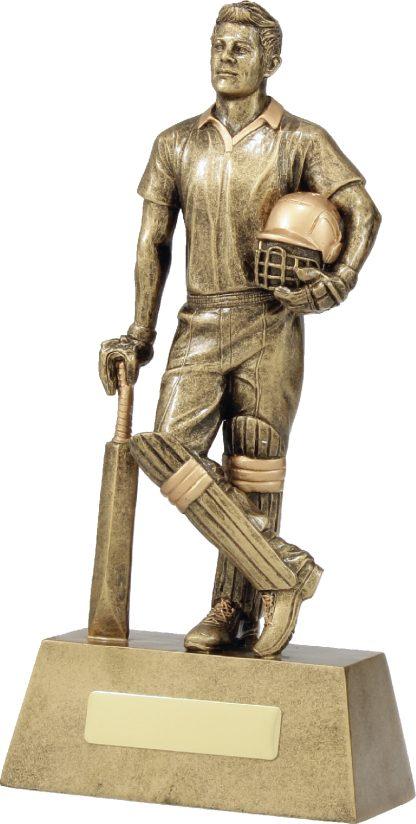 11714E Cricket trophy 265mm