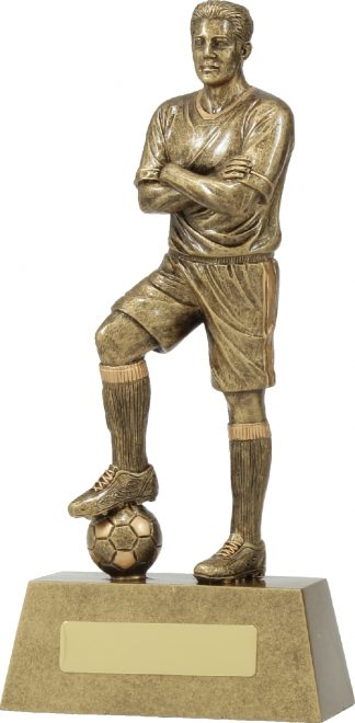 11780D Soccer trophy 240mm
