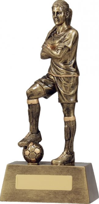 11781D Soccer trophy 240mm