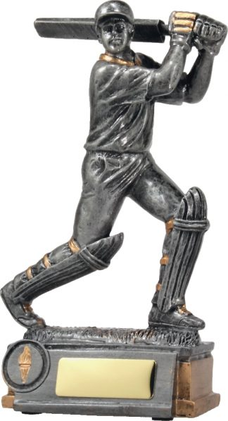 12014 Cricket trophy 210mm