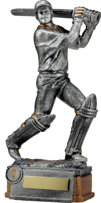 12214 Cricket trophy 290mm