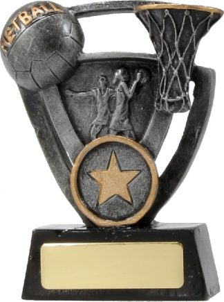 12737S Netball trophy 110mm