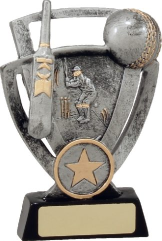 12740M Cricket trophy 125mm