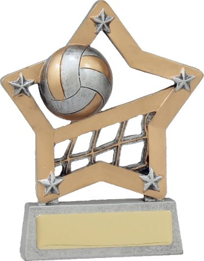 12927 Volley Ball Trophy 125mm