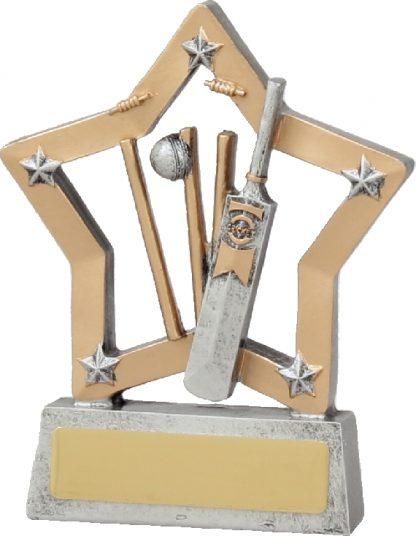 12940 Cricket Trophy 125mm