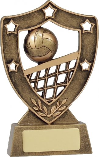 13527 Volley Ball Trophy 125mm
