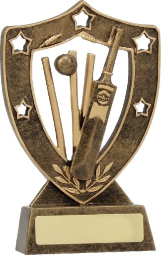 13640 Cricket trophy 160mm