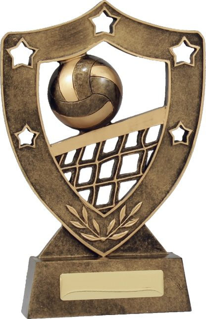 13727 Volley Ball Trophy 205mm