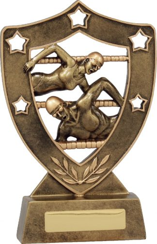 13730 Swimming trophy 210mm