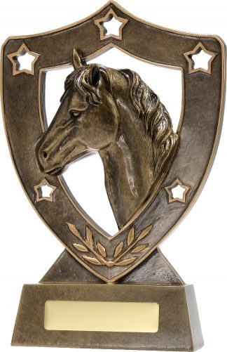 13735 Equestrian trophy 210mm