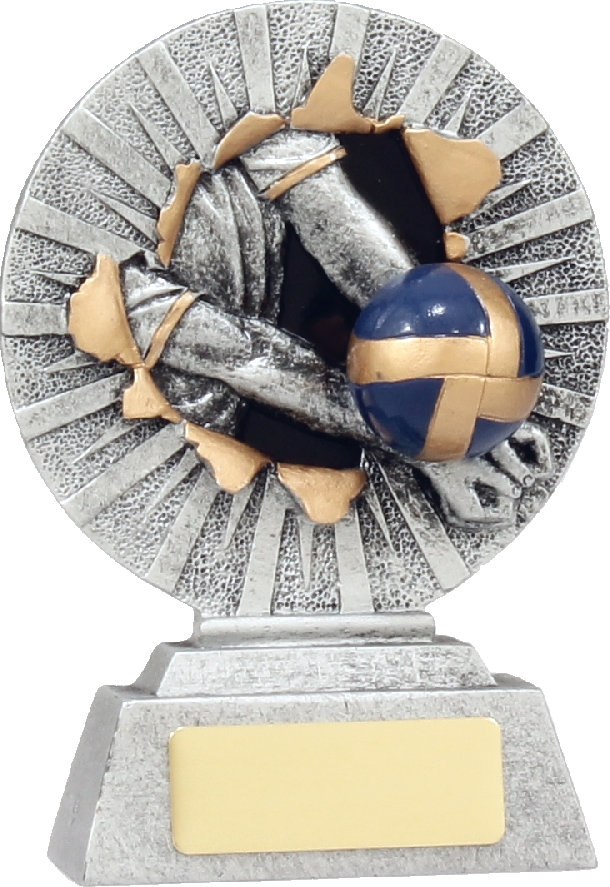 22127A Volley Ball trophy 130mm