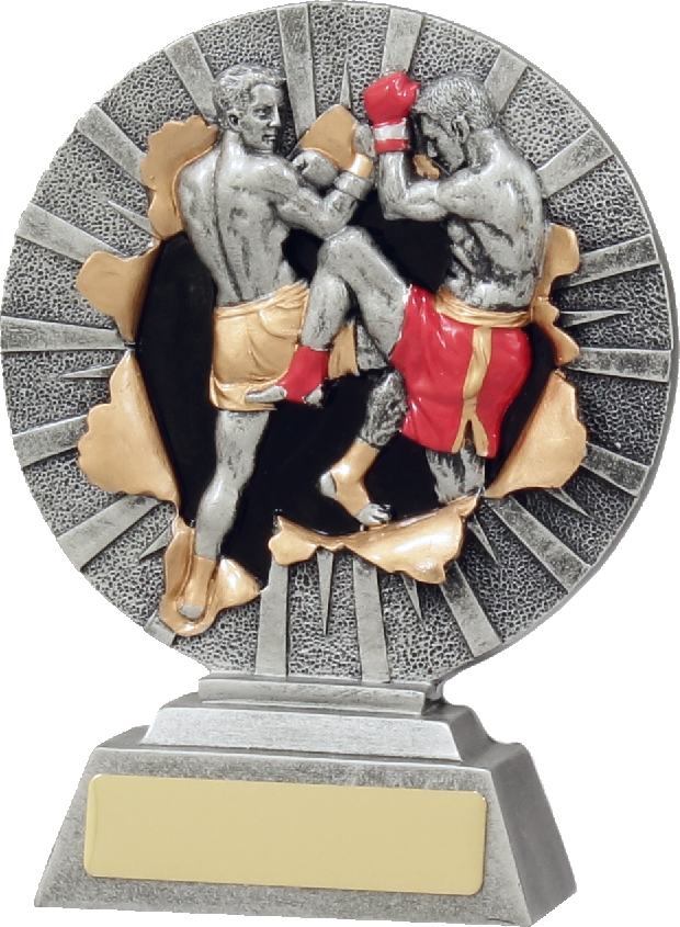 22132A Boxing trophy 160mm