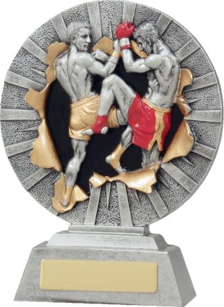 22132B Boxing trophy 180mm