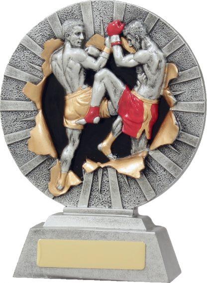 22132B Boxing trophy 180mm