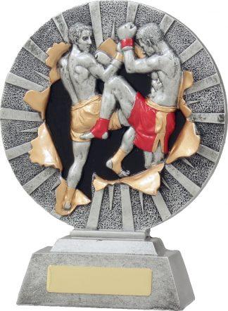 22132C Boxing trophy 200mm