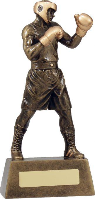 A1249C Boxing trophy 220mm