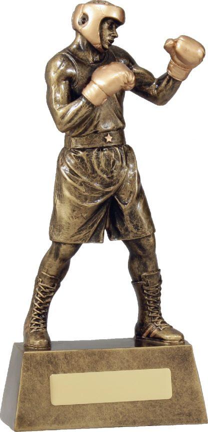 A1249D Boxing trophy 240mm