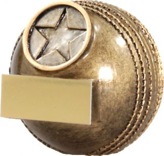 A1332B Cricket trophy 61mm
