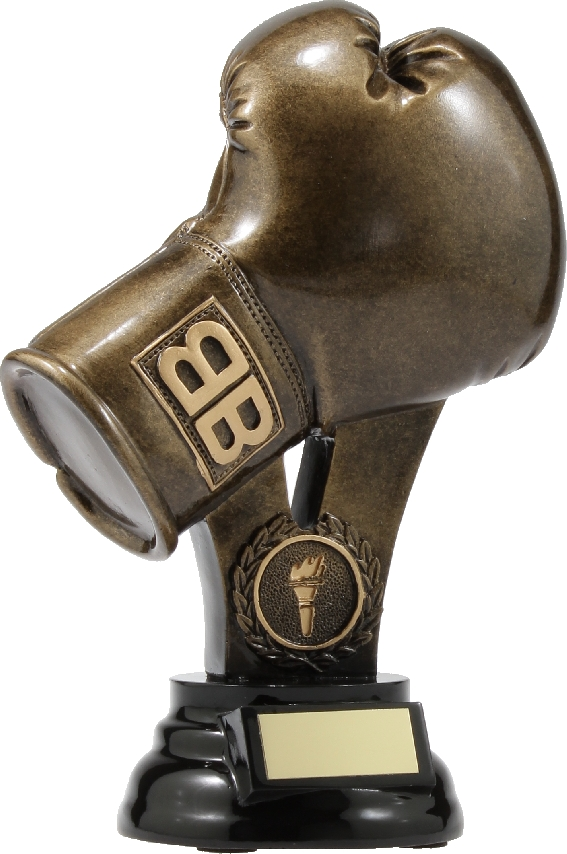 A307A Boxing trophy 210mm