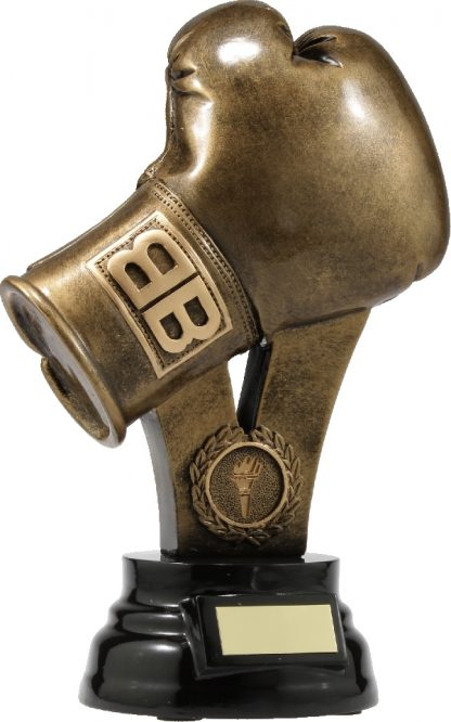A307B Boxing trophy 240mm