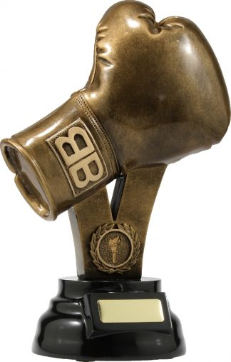 A307C Boxing trophy 280mm