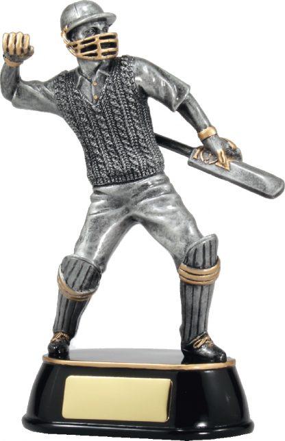 A357A Cricket Trophy 205mm