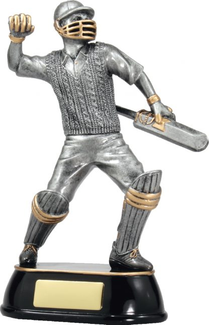 A357B Cricket Trophy 225mm