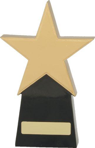 A369B Achievement Trophies Trophy 210mm