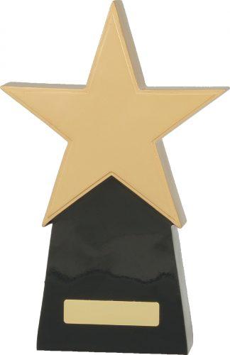 A369C Achievement Trophies Trophy 260mm