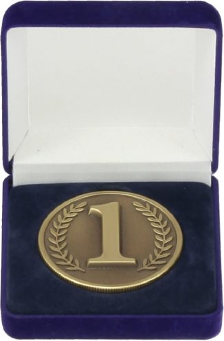 H43 All Sports Medal