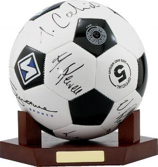LRM Soccer Trophy
