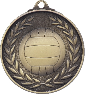 MX811G Netball Medal 50mm New 2015
