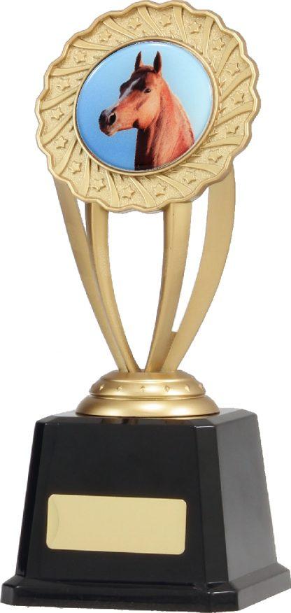 Q683 Achievement Trophies Trophy 215mm