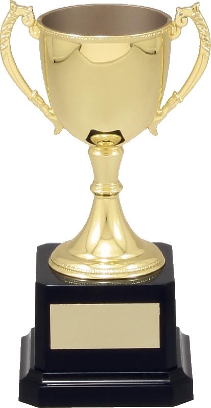 Cup VT5 145mm