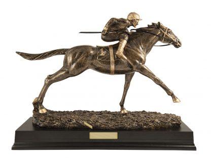 Darts Trophy 539G 230mm