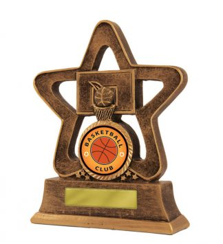 Basketball Trophy 587/7 110mm